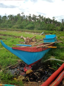 Small boats that were not destroyed or lost at sea were carried far inland by the typhoon's tidal surge, which also ruined coastal rice crops. Photo: Mark Kirwin